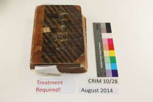 Image of CRIM 10.28 Before Treatment Front Board