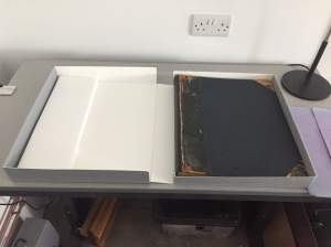 holly smith book conservation sussex brighton
