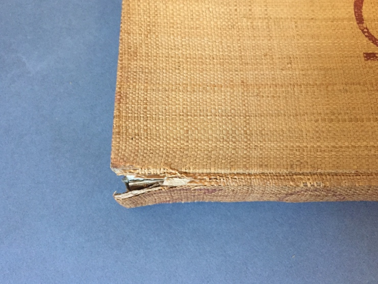 A picture of the top of the spine before treatment showing a split in the cover material.
