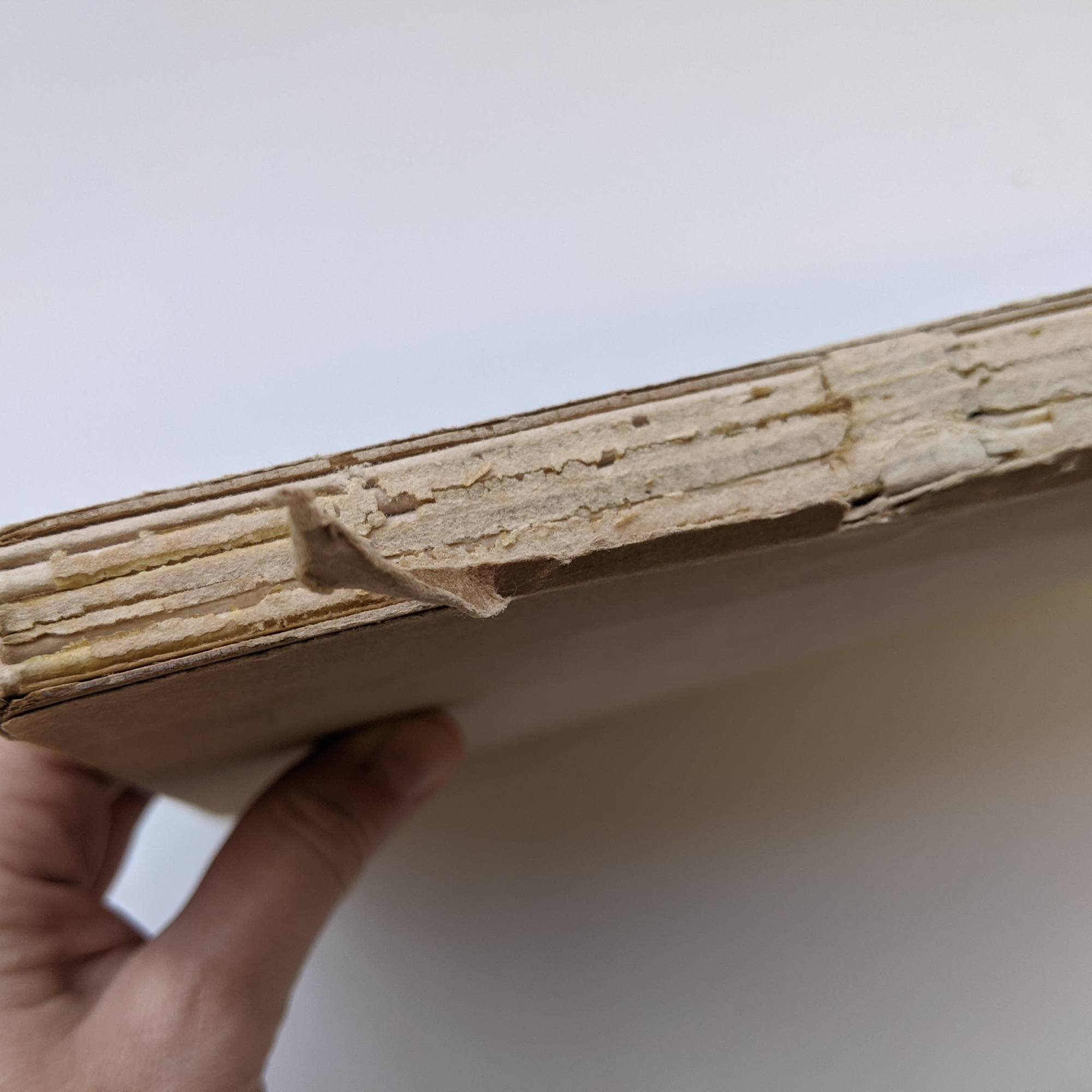 The spine of the book is visible where the dust jacket is missing areas. You can see the original spine lining paper and adhesives are cracking.