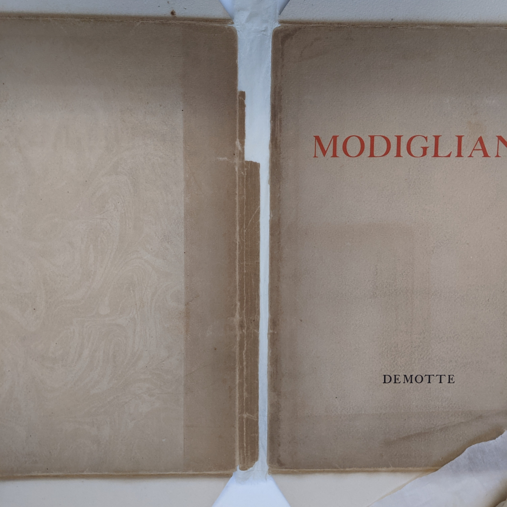 The dust jacket lies opened flat face up. A layer of thin Japanese paper has been adhered from the inside to reattach the two sides of the cover.